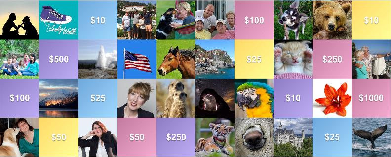 GivingGrid – The Cool Visual Fundraiser